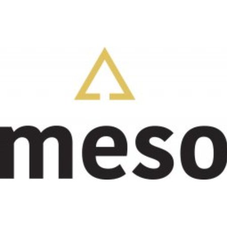 Groupe Meso